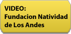 fundacio-video-button